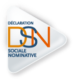 logo-declaration_sociale_nominative-dsn